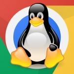 Как сделать очистку диска и увеличить свободное место в Linux Mint? Лучшие программы